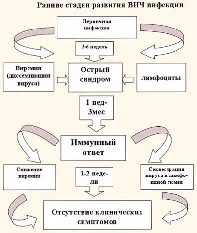 Знакомства богданович.