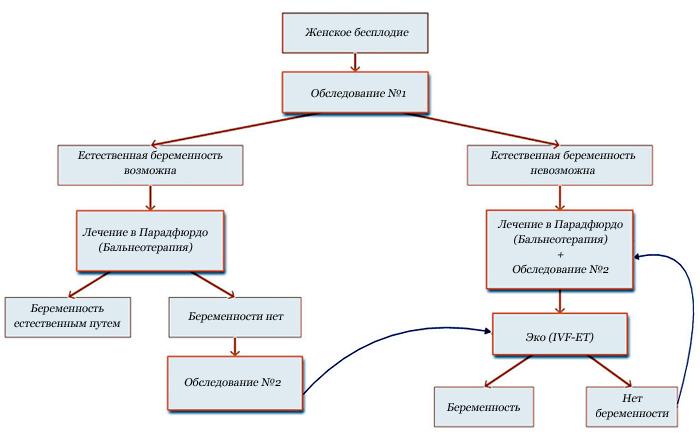 Схема лечения бесплодия
