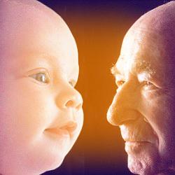 Теория старения Мечникова