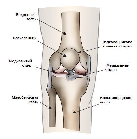 Рисунок коленный сустав контрактура локтевого сустава после вывиха