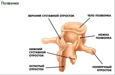 Перелом руки осколок